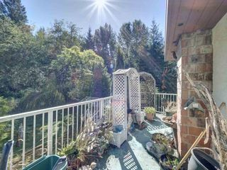 Photo 13: 834 PARK Road in Gibsons: Gibsons & Area House for sale (Sunshine Coast)  : MLS®# R2494965
