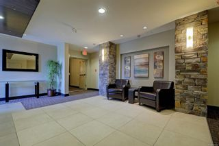 Photo 21: 305 623 Treanor Ave in : La Thetis Heights Condo for sale (Langford)  : MLS®# 874503