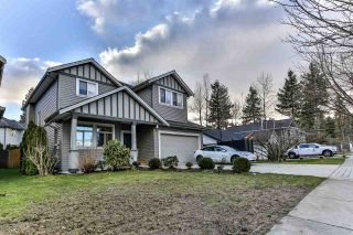 Photo 35: 19318 PARK Road in Pitt Meadows: Mid Meadows House for sale : MLS®# R2543316