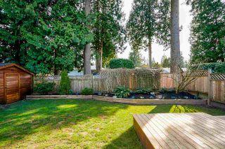 "Photo 40: 11986 COTTONWOOD Avenue in Delta: Sunshine Hills Woods House for sale in ""SUNSHINE HILLS/WOODS"" (N. Delta)  : MLS®# R2561955"