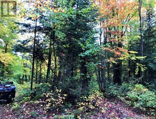 Photo 2: 0 OTTAWA Avenue in South River: Vacant Land for sale : MLS®# 40156406