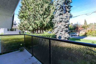 Photo 16: 3816 CLINTON STREET in Burnaby: Suncrest House for sale (Burnaby South)  : MLS®# R2010789