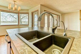 Photo 15: 119 East Chestermere Drive: Chestermere Semi Detached for sale : MLS®# A1082809