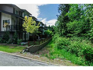 "Photo 17: 10 23986 104TH Avenue in Maple Ridge: Albion Townhouse for sale in ""SPENCER BROOK"" : MLS®# V1006455"