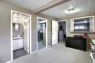Photo 20: 163 Erin Meadow Green SE in Calgary: Erin Woods Detached for sale : MLS®# A1077161