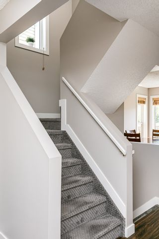 Photo 21: 4259 23St in Edmonton: Larkspur House for sale : MLS®# E4203591