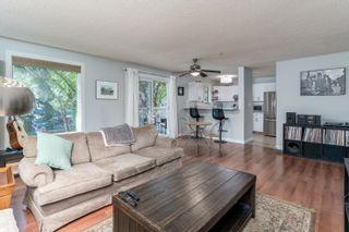 Photo 1: 213 10153 117 Street in Edmonton: Zone 12 Condo for sale : MLS®# E4261680