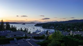 Photo 43: 6847 Woodward Dr in : CS Brentwood Bay House for sale (Central Saanich)  : MLS®# 876796