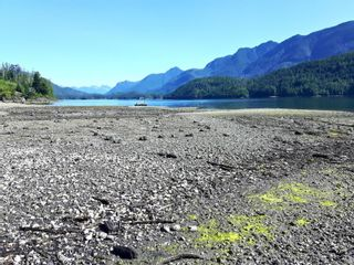 Photo 4: File#1406265 Plumper Harbour in : Isl Small Islands (North Island Area) Business for sale (Islands)  : MLS®# 875839