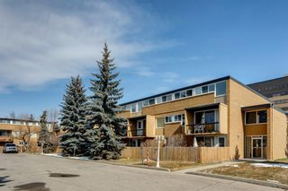 Photo 32: 211 7007 4A Street SW in Calgary: Kingsland Apartment for sale : MLS®# A1086391