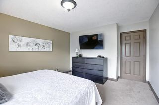 Photo 24: 2091 Sagewood Rise SW: Airdrie Detached for sale : MLS®# A1121992