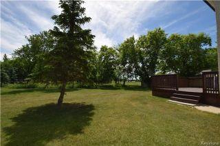 Photo 16: 5422 Rannock Avenue in Winnipeg: Charleswood Residential for sale (1G)  : MLS®# 1715360