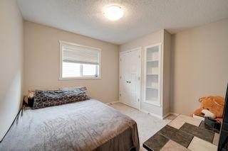 Photo 23: 3716 168 Avenue in Edmonton: Zone 03 House for sale : MLS®# E4264893