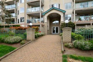 """Photo 1: 104 20443 53RD Avenue in Langley: Langley City Condo for sale in """"Countryside Estates"""" : MLS®# R2415848"""