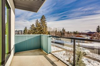 Photo 32: 4624 Montalban Drive NW in Calgary: Montgomery Detached for sale : MLS®# A1065853