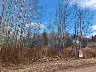 Photo 6: 12002 Twp Rd 605A: Rural St. Paul County Rural Land/Vacant Lot for sale : MLS®# E4239018