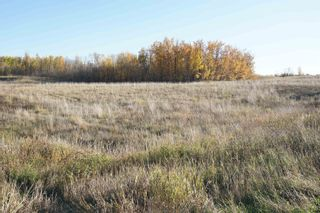 Photo 11: 17 53214 RR13: Rural Parkland County Rural Land/Vacant Lot for sale : MLS®# E4266457