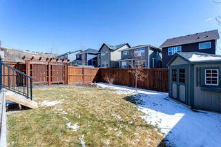 Photo 38: 133 Cranbrook Crescent SE in Calgary: Cranston Detached for sale : MLS®# A1088402