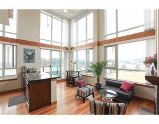 Photo 6: 503 7 RIALTO COURT in Quay: Home for sale : MLS®# V1133033