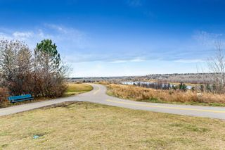 Photo 44: 96 Mt Robson Circle SE in Calgary: McKenzie Lake Detached for sale : MLS®# A1046953