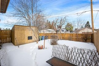 Photo 2: 128 Dovertree Place SE in Calgary: Dover Semi Detached for sale : MLS®# A1075565