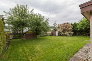 Photo 18: 45167 DEANS Avenue in Chilliwack: Chilliwack W Young-Well House for sale : MLS®# R2171974