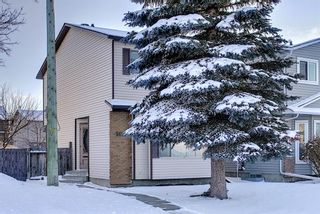Photo 40: 148 Martinbrook Road NE in Calgary: Martindale Detached for sale : MLS®# A1069504