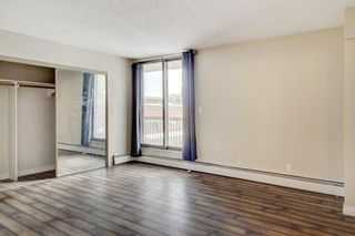 Photo 17: 203 215 14 Avenue SW in Calgary: Beltline Apartment for sale : MLS®# A1092010