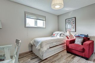 Photo 18: 314 Nelson Road: Carseland Detached for sale : MLS®# A1040058