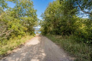 Photo 2: Lot Highway 201 in Round Hill: 400-Annapolis County Vacant Land for sale (Annapolis Valley)  : MLS®# 202123614