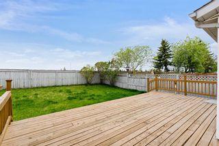Photo 29: 319 Eldorado Place NE in Calgary: Monterey Park Detached for sale : MLS®# A1114122