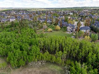 Photo 45: 20 HERITAGE LAKE Close: Heritage Pointe Detached for sale : MLS®# A1111487