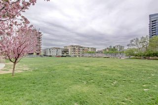 Photo 29: 101 215 13 Avenue SW in Calgary: Beltline Apartment for sale : MLS®# A1075160