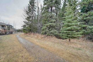 Photo 46: 1528 BLACKMORE Way in Edmonton: Zone 55 House for sale : MLS®# E4235174
