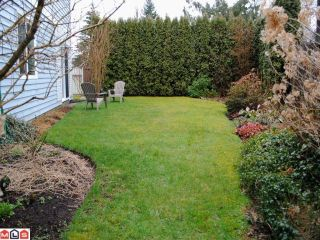 """Photo 10: 9018 155A Street in Surrey: Fleetwood Tynehead House for sale in """"Berkshire Park"""" : MLS®# F1106800"""
