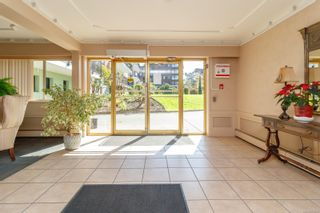 Photo 6: 304 1680 Poplar Ave in : SE Mt Tolmie Condo for sale (Saanich East)  : MLS®# 873736
