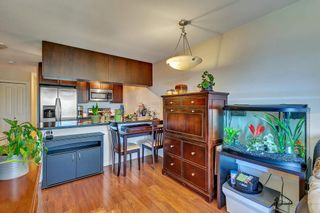 """Photo 9: 433 5660 201A Street in Langley: Langley City Condo for sale in """"Paddington Station"""" : MLS®# R2596042"""