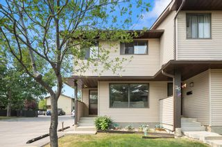 Main Photo: 29 380 Bermuda Drive NW in Calgary: Beddington Heights Row/Townhouse for sale : MLS®# A1134218