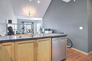 Photo 7: 314 1920 14 Avenue NE in Calgary: Mayland Heights Apartment for sale : MLS®# A1112494