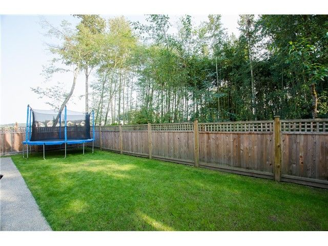 """Photo 12: Photos: 17358 3RD Avenue in Surrey: Pacific Douglas House for sale in """"Summer Field - Douglas Crossing"""" (South Surrey White Rock)  : MLS®# F1422324"""