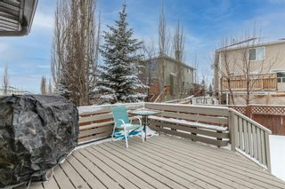 Photo 40: 218 Citadel Estates Heights NW in Calgary: Citadel Detached for sale : MLS®# A1073661