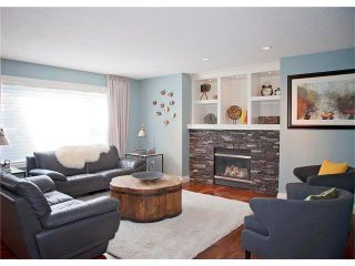 Photo 10: 67 CHAPMAN Way SE in Calgary: Chaparral House for sale : MLS®# C4065212