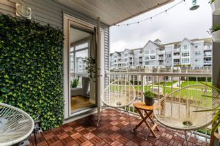"""Photo 19: 206 3142 ST JOHNS Street in Port Moody: Port Moody Centre Condo for sale in """"SONRISA"""" : MLS®# R2602260"""