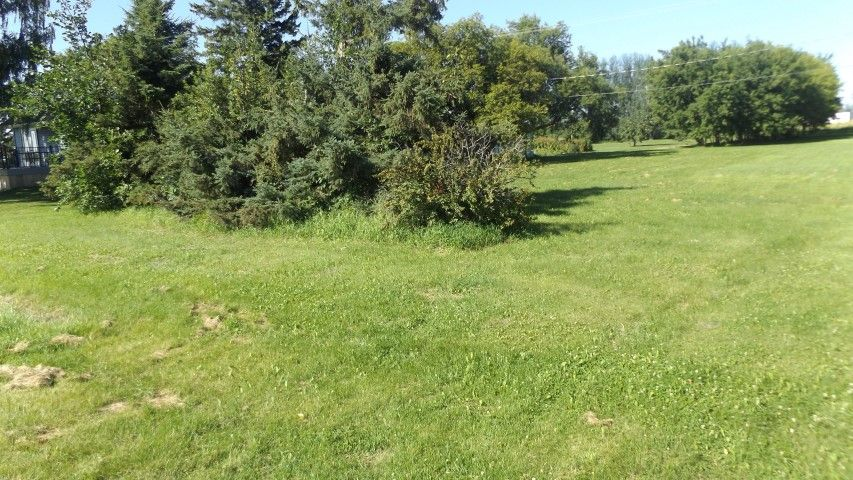 Main Photo: Lot G 7th Street in Gretna: R35 Vacant Land for sale