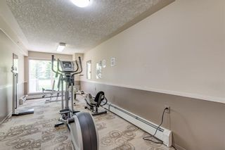 Photo 24: 208 5000 SOMERVALE Court SW in Calgary: Somerset Condo for sale : MLS®# C4140818