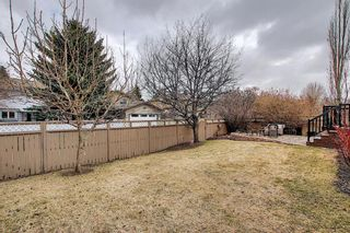 Photo 46: 226 Sun Canyon Crescent SE in Calgary: Sundance Detached for sale : MLS®# A1092083