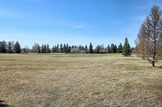 Photo 43: 136 Brabourne Road SW in Calgary: Braeside Detached for sale : MLS®# A1097410