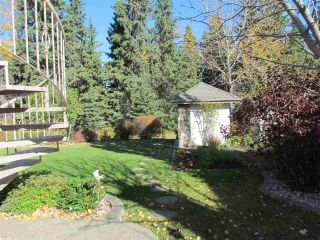 Photo 49: 1528 BLACKMORE Way in Edmonton: Zone 55 House for sale : MLS®# E4235174