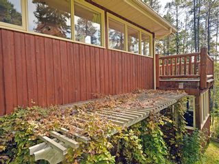 Photo 9: 231190 Forestry Way: Bragg Creek Detached for sale : MLS®# A1144548