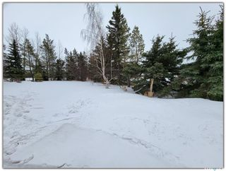 Photo 22: Harris Acreage in North Battleford: Residential for sale (North Battleford Rm No. 437)  : MLS®# SK842567